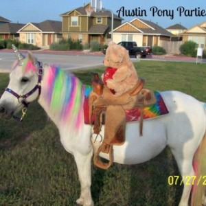 Austin Pony Parties - Pony Party / Carnival Rides Company in Austin, Texas