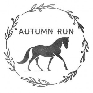 Autumn Run Ponies - Pony Party in Olympia, Washington
