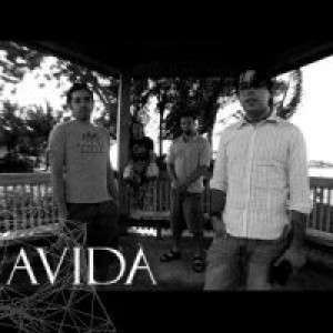 Avida - Cover Band in Boca Raton, Florida