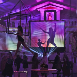 Axis Performing Arts - Aerialist in Houston, Texas