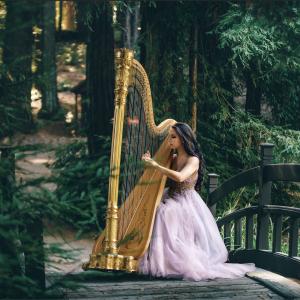 Aysha Gomez-Kureishi, Harpist - Harpist in San Jose, California