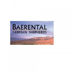Baerental German Shepherds - Impersonator / Corporate Event Entertainment in Albuquerque, New Mexico