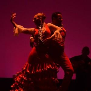 Baila Flamenco - Flamenco Dancer in Miami, Florida