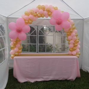 Balloon Entertainment Event Planning - Balloon Decor in Deltona, Florida