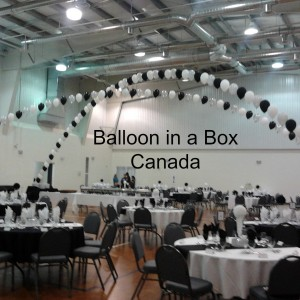 Balloon in a Box Canada - Balloon Decor / Party Decor in Ingersoll, Ontario