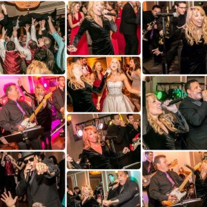 Band of Gold Music - Wedding Band / Wedding Entertainment in Toms River, New Jersey
