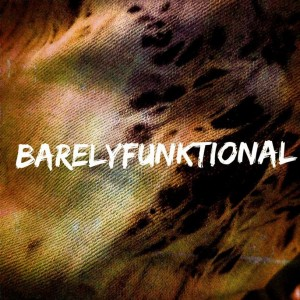 Barely Funktional - R&B Group in San Jose, California