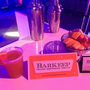 Barkeep - Bartender / Wedding Services in Bethesda, Maryland