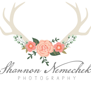 Shannon Nemechek Photography and Makeup Services - Wedding Photographer / Makeup Artist in Staunton, Illinois