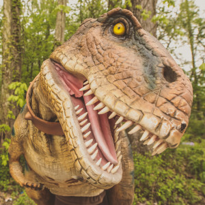 Beaux the Tyrannosaurus Rex - Costumed Character in Evansville, Indiana