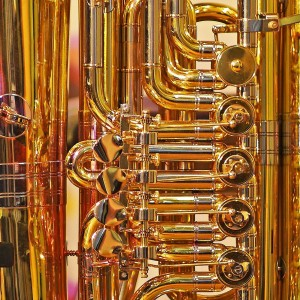 Tuba by Anthony - Brass Musician in Milwaukee, Wisconsin