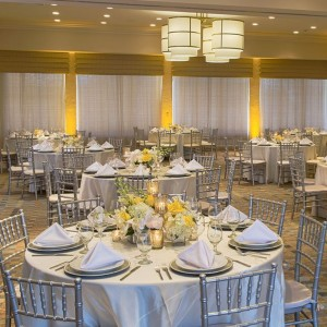 Better Party Rentals - Party Rentals in Deerfield Beach, Florida