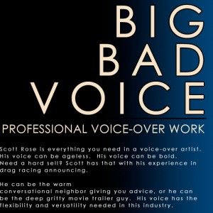 Big Bad Voice - Voice Actor / Narrator in St Louis, Missouri