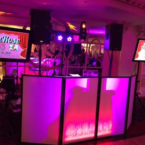 Big Mark Entertainment - Wedding DJ in Long Island, New York
