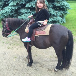 Birthday Pony Rides - Pony Party in Kalamazoo, Michigan