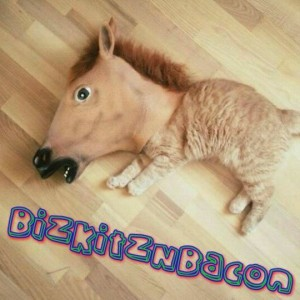BizkitzNBacon - Club DJ in Fort Worth, Texas