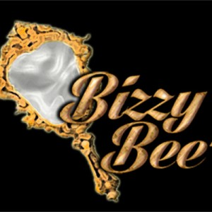 BizzyBee's Beauty Care Services, LLC - Event Planner in Chicago, Illinois