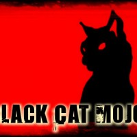 Black Cat Mojo - Blues Band in Riverside, California