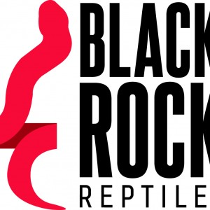 Black Rock Reptiles - Reptile Show in Hagerstown, Maryland