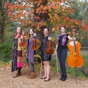 Blackstone Valley String Quartet - Classical Ensemble in Douglas, Massachusetts