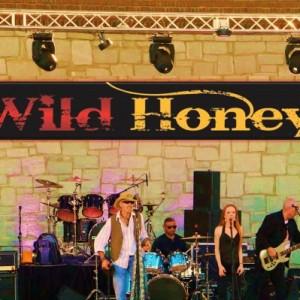 Wild Honey - Cover Band in Atlanta, Georgia