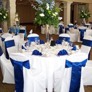Blissful Weddings and Event Planning - Wedding Planner in Chapel Hill, North Carolina