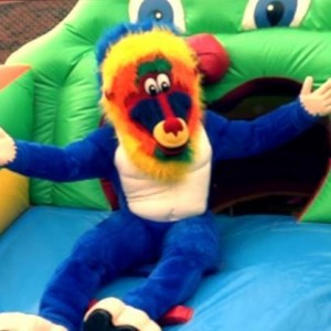 Blue Baboons Funtime Events, Inc. - Party Inflatables / Carnival Rides Company in Harrisburg, North Carolina