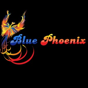 Blue Phoenix - Party Inflatables in Charlotte, North Carolina