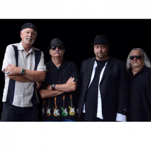 Blue Rhinos - Party Band / Halloween Party Entertainment in Sequim, Washington