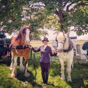 Blue River Carriage Company - Horse Drawn Carriage / Pony Party in Morristown, Indiana