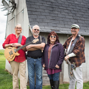 Blue Scratch - Blues Band / Classic Rock Band in Marion, Iowa