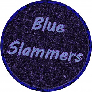 Blue Slammers - 1990s Era Entertainment in Gainesville, Florida