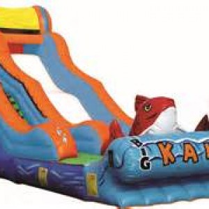Bouncer World - Party Inflatables in Sumter, South Carolina