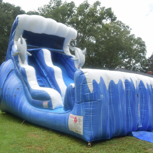 Bouncing Around Rentals - Party Inflatables / Children's Party Entertainment in Sumter, South Carolina