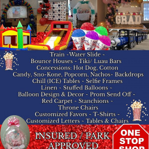 Bouncing Around The Motor City - Balloon Decor / Party Rentals in Detroit, Michigan