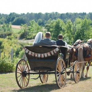 Boyne Valley Equine Tours & Services, LLC - Horse Drawn Carriage / Wedding Services in Charlevoix, Michigan