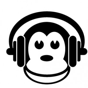 Brain Monkeys Media - DJ in Madison, Wisconsin