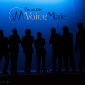 Brandeis VoiceMale - A Cappella Group / Singing Group in Waltham, Massachusetts
