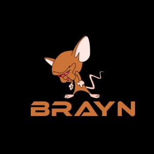 Brayn - Club DJ in Dallas, Texas