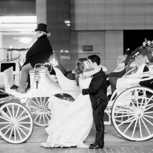 Brazos Carriage Co - Horse Drawn Carriage / Holiday Party Entertainment in Fort Worth, Texas