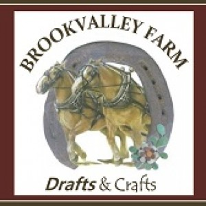Brookvalley Farm Drafts & Crafts - Horse Drawn Carriage / Pony Party in Carbondale, Pennsylvania