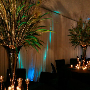 Brown's Creative Events - Party Decor / Event Planner in Yemassee, South Carolina