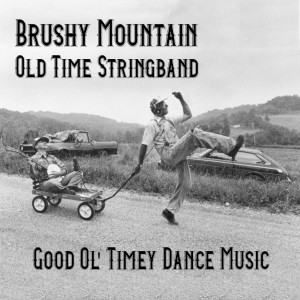 Brushy Mountain Old-Time String Band - Americana Band in Taylorsville, North Carolina
