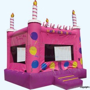 Bsmithevents - Children's Party Entertainment / Party Inflatables in Queens, New York