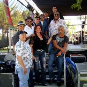 Bump City Reunion - Funk Band / Party Band in Reno, Nevada