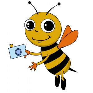 Busy Bee Portraits - Portrait Photographer in Santa Barbara, California