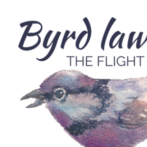 Byrd Law - Jazz Band / Wedding Musicians in Lexington, Kentucky