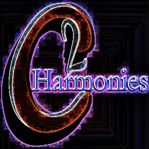 C2 Harmonies - Acoustic Band / 1980s Era Entertainment in New York City, New York