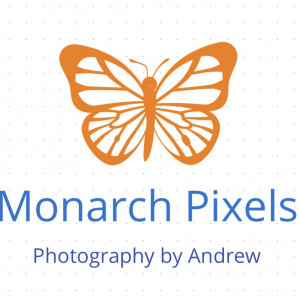 Monarch Pixels - Photographer / Wedding Photographer in Aurora, Colorado