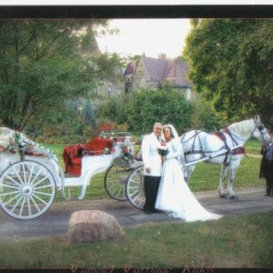 Camelot Carriage Rides - Horse Drawn Carriage / Prom Entertainment in Fort Wayne, Indiana